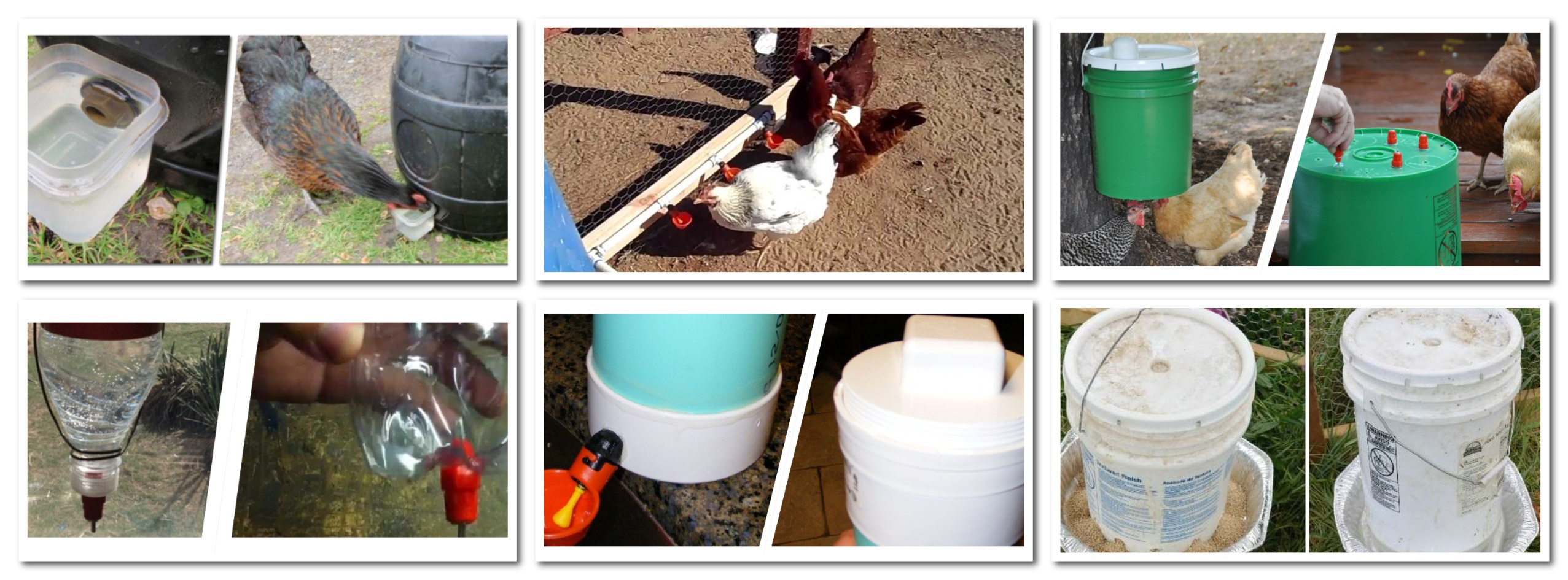 6 Creative Diy Chicken Waterer Ideas Go Cluck Cluck